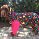 made to measure dog coat