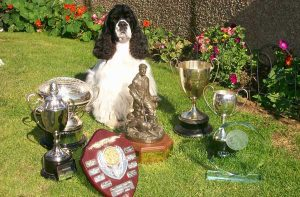 Toto-&-his-trophies-2013
