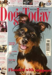 Dogs Today front cover